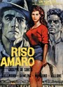 Picture of RISO AMARO (Bitter Rice) (1949)  * with switchable English subtitles *