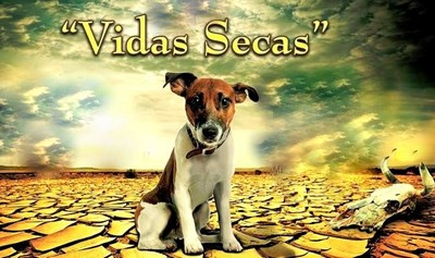 Picture of VIDAS SECAS  (1963) * with switchable Spanish and English subtitles *