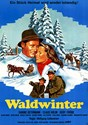 Picture of WALDWINTER  (1956)