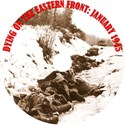 Bild von DYING ON THE EASTERN FRONT: JANUARY 1945  (2003)  * with switchable English subtitles *